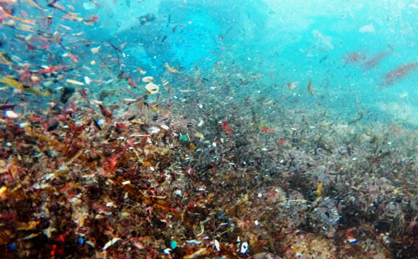 Microplastic-Pollution_1400xprogressivejpg