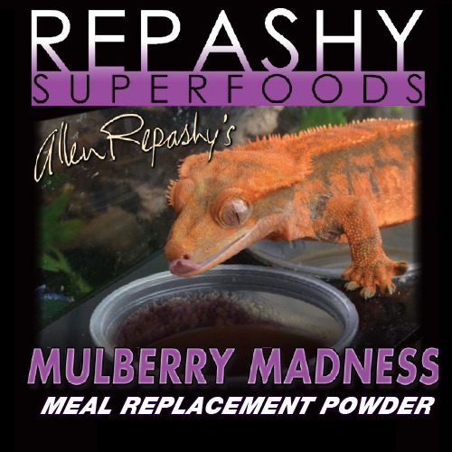 Mulberry Madness