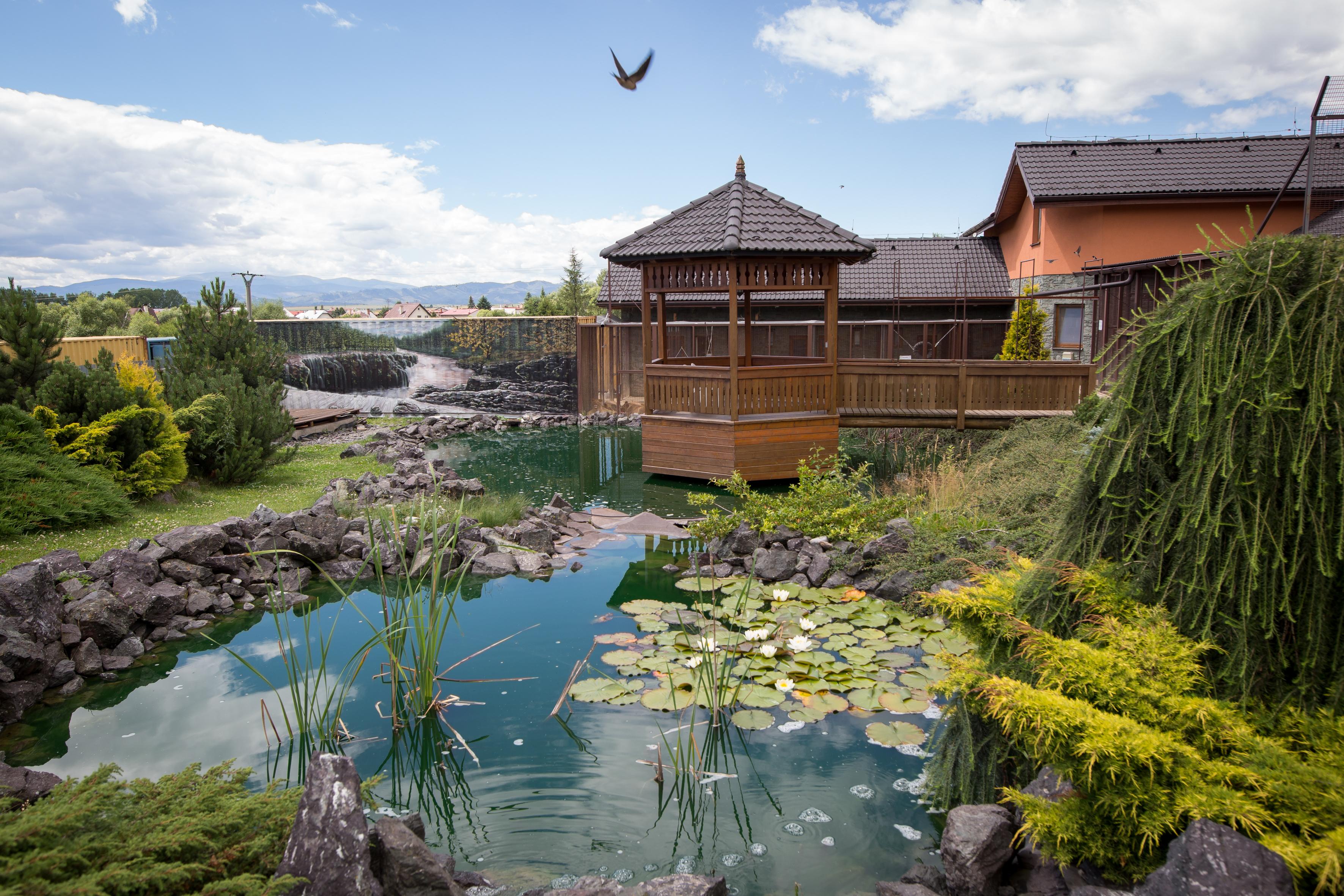 Wild Park Resort ddd0754ab82