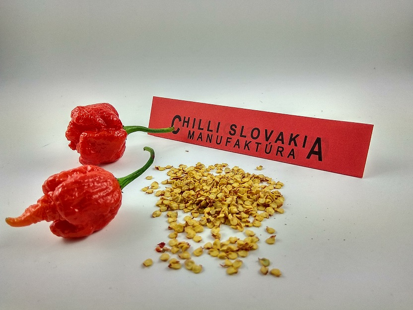 Carolina Reaper red - 10 ks semiačok