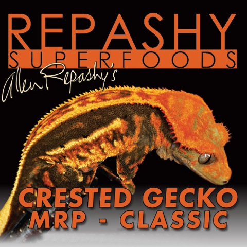 "Crested Gecko ""Classic"""