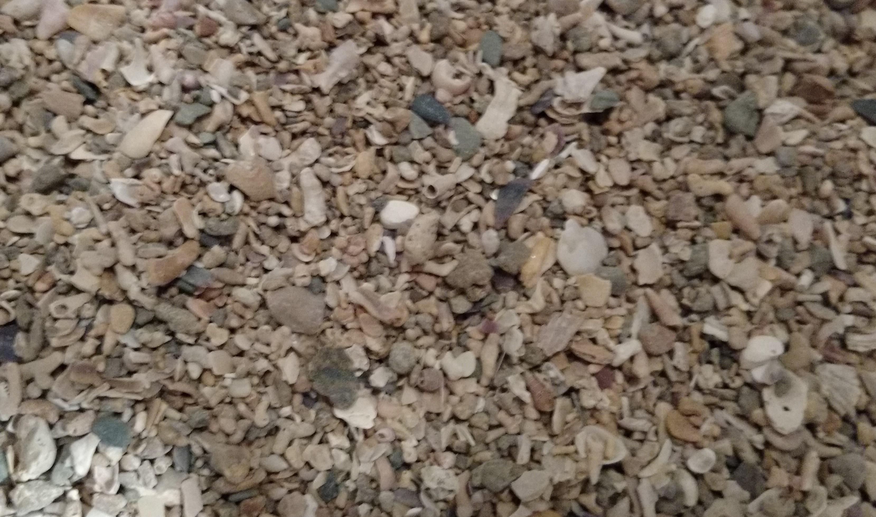 10007-versele-laga-seaweed-grit-2jpg