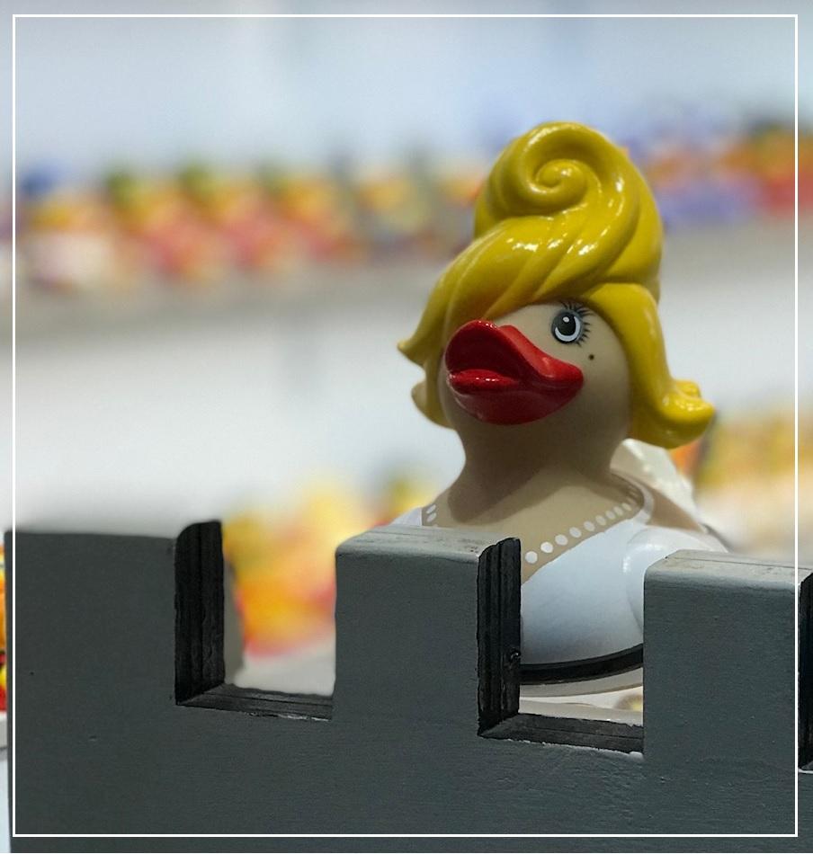 duck_ajpg