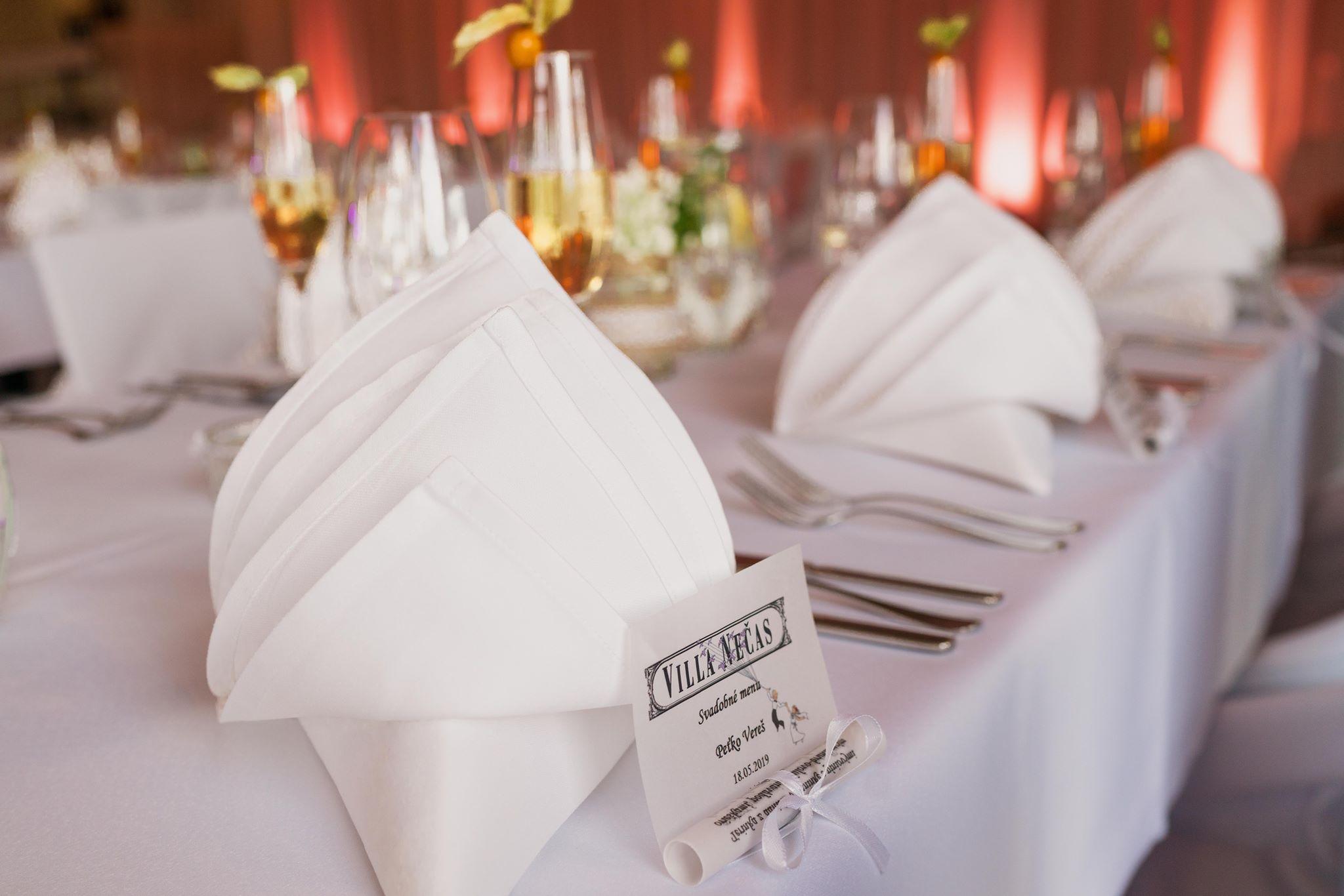 svadba-wedding-Villa-Necas-Zilina-DJ-moderator-starejsijpg