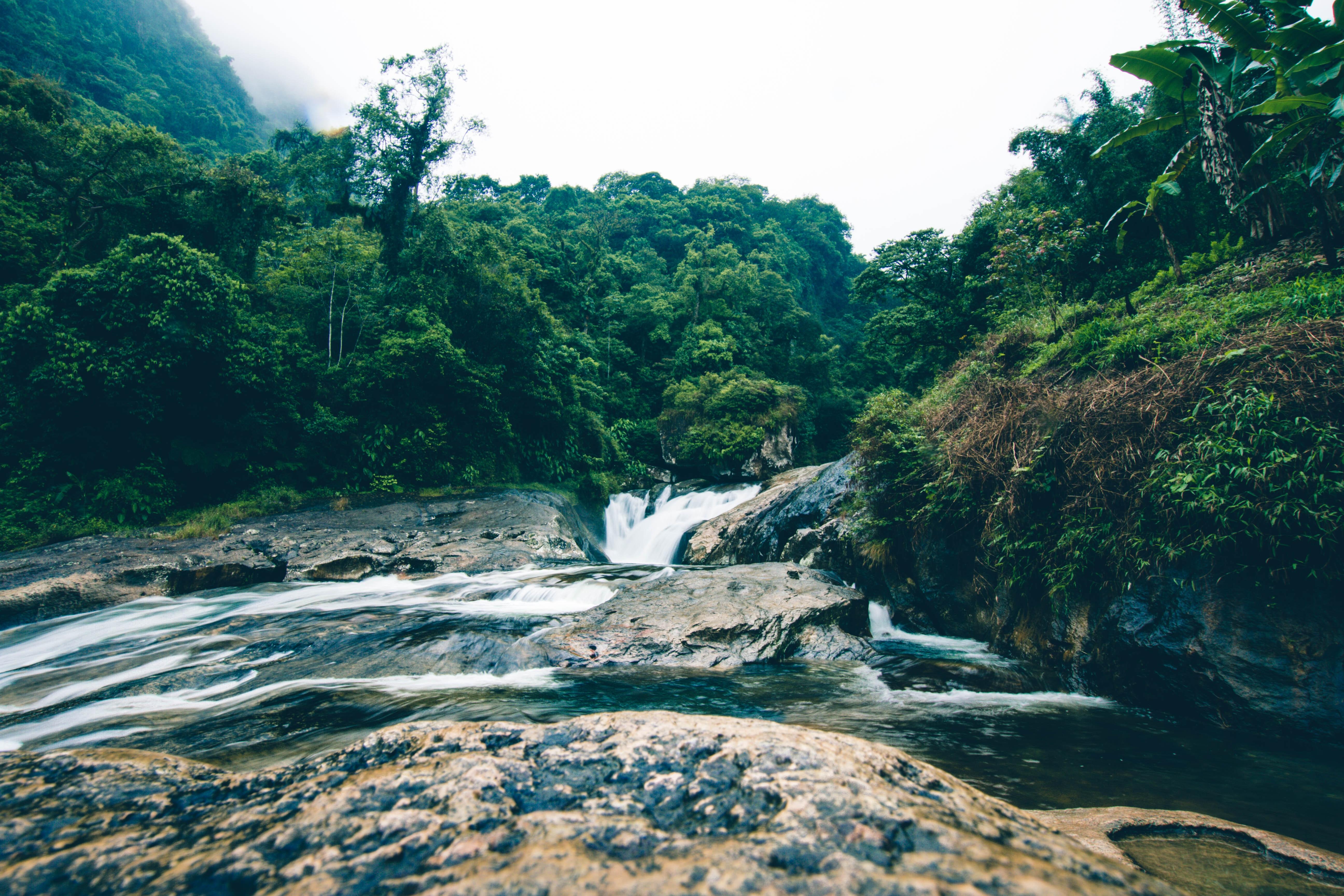 dzungla-mexiko-blog-ochrana-vodyjpg