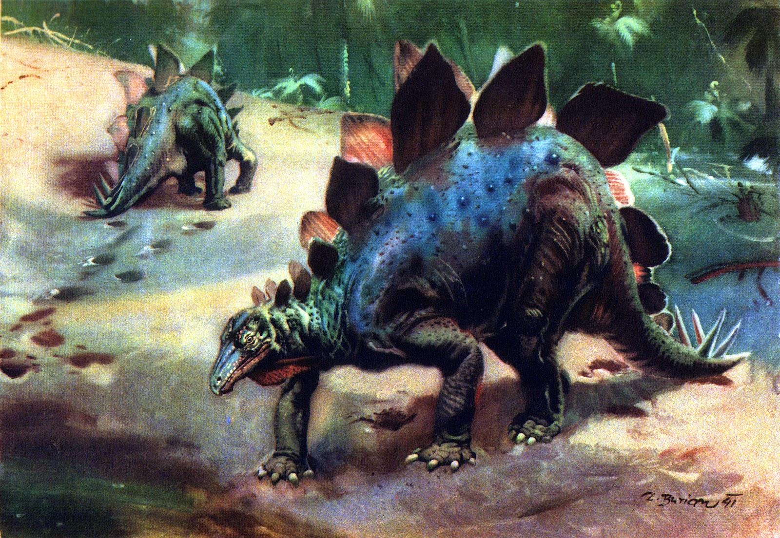 stegosaurus_by_zdenek_burian_1941JPG