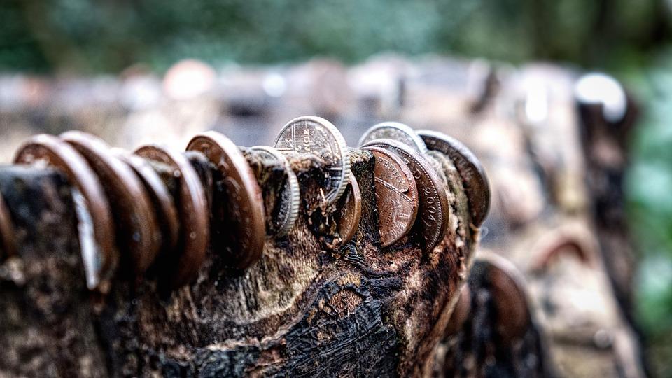 tree-stump-2433166_960_720jpg