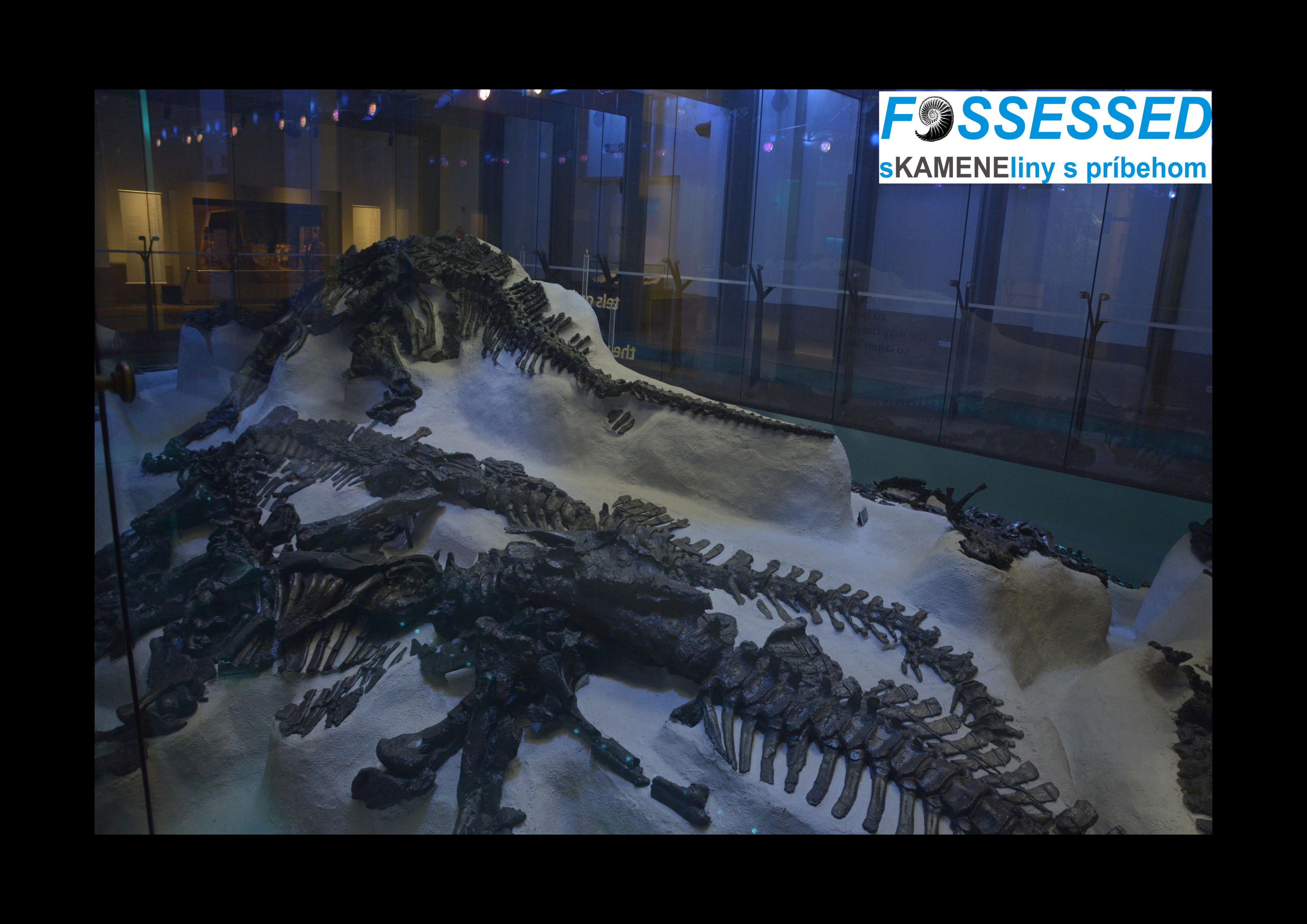 iguanodonjpg