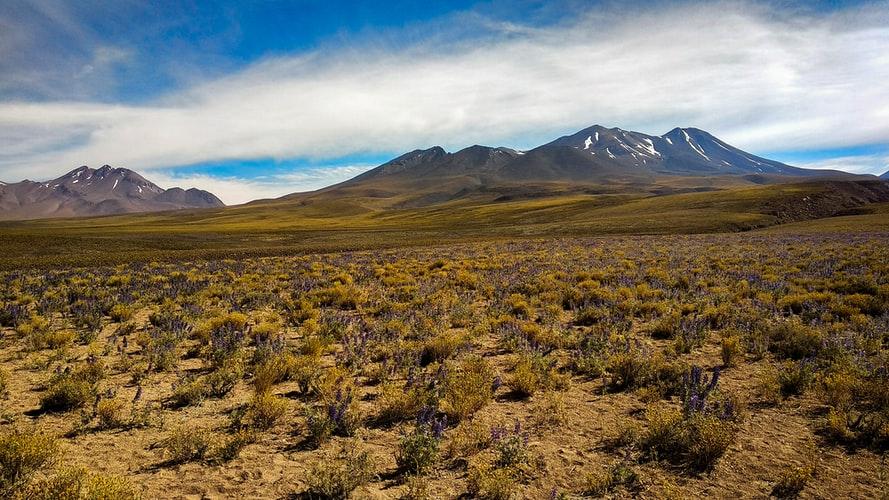 san-pedro-chile-blog-ochrana-vody-ekologicke-cistiace-prostriedkyjpg