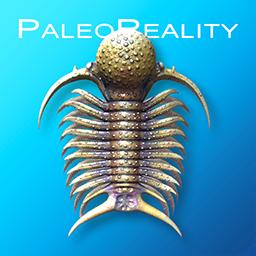 paleoreality_ico_web_1png