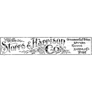 "IOD Decor Transfers ""Storrs and Harrison"""