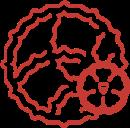 130_piros_logo_fn_webpng