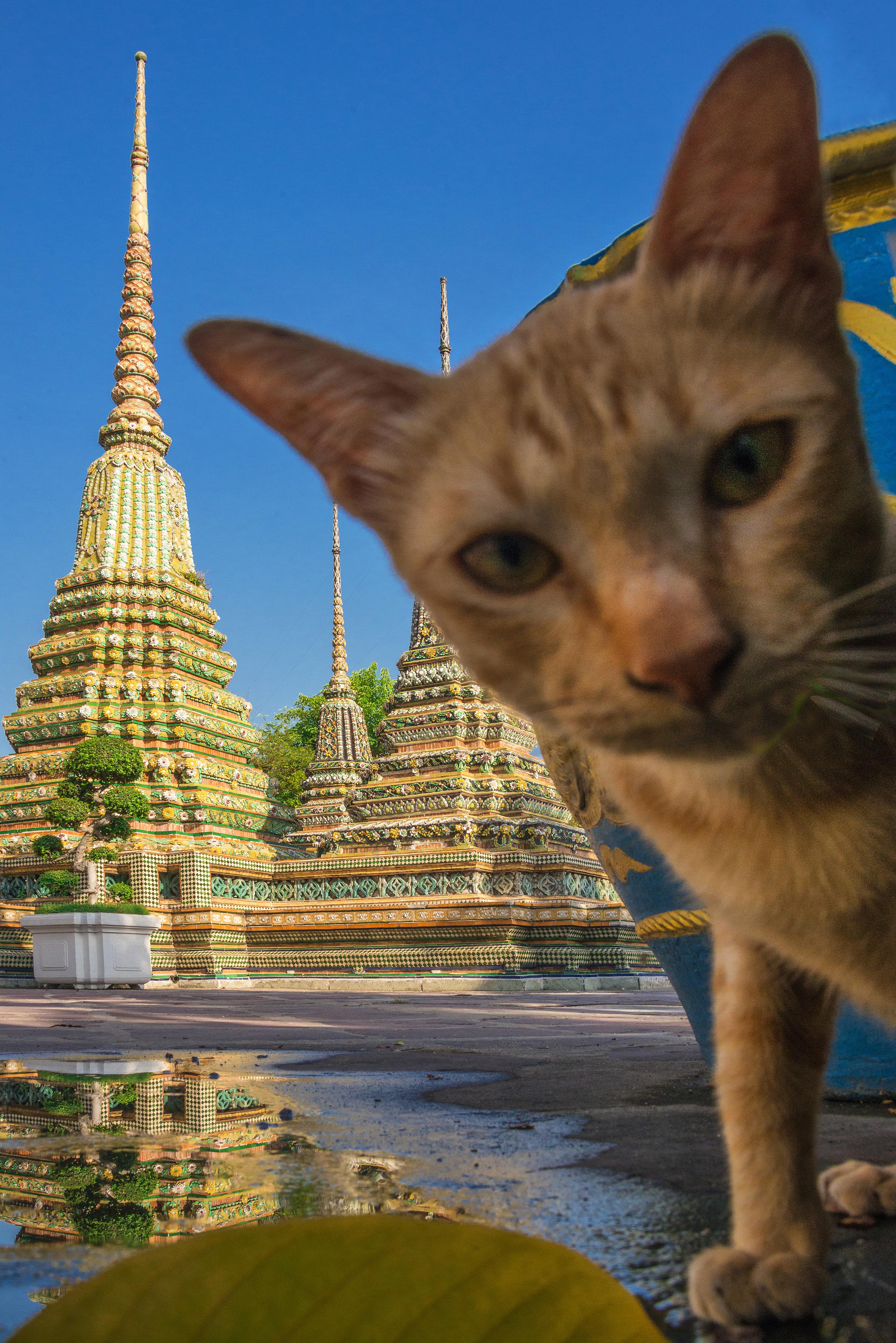Thailand BKKjpg
