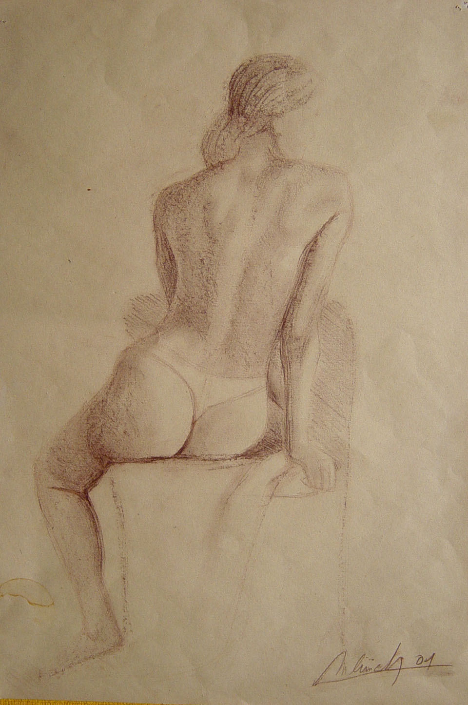 technique: charcoal dimensions: 297 x 210 cm year: 2001